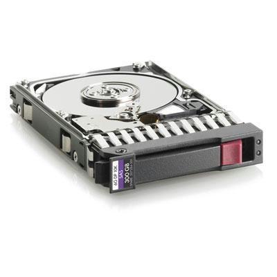 300GB 10K 6G 2 5 SAS DP HDD