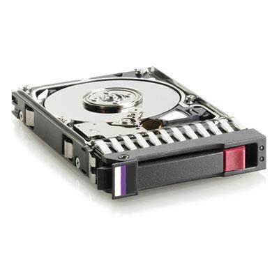 300GB 6G SAS 15K 3 5in Dp ENT
