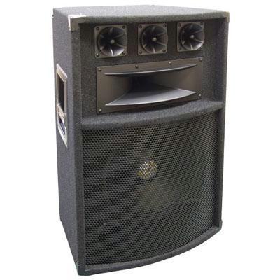 """12\"""" Five Way Pro Audio Speaker"""