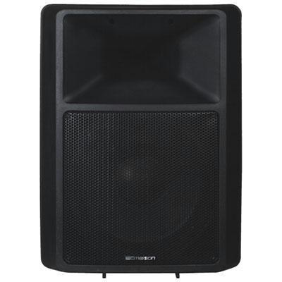 """300W 2-Way Speaker w 12\"""" Woofe"""